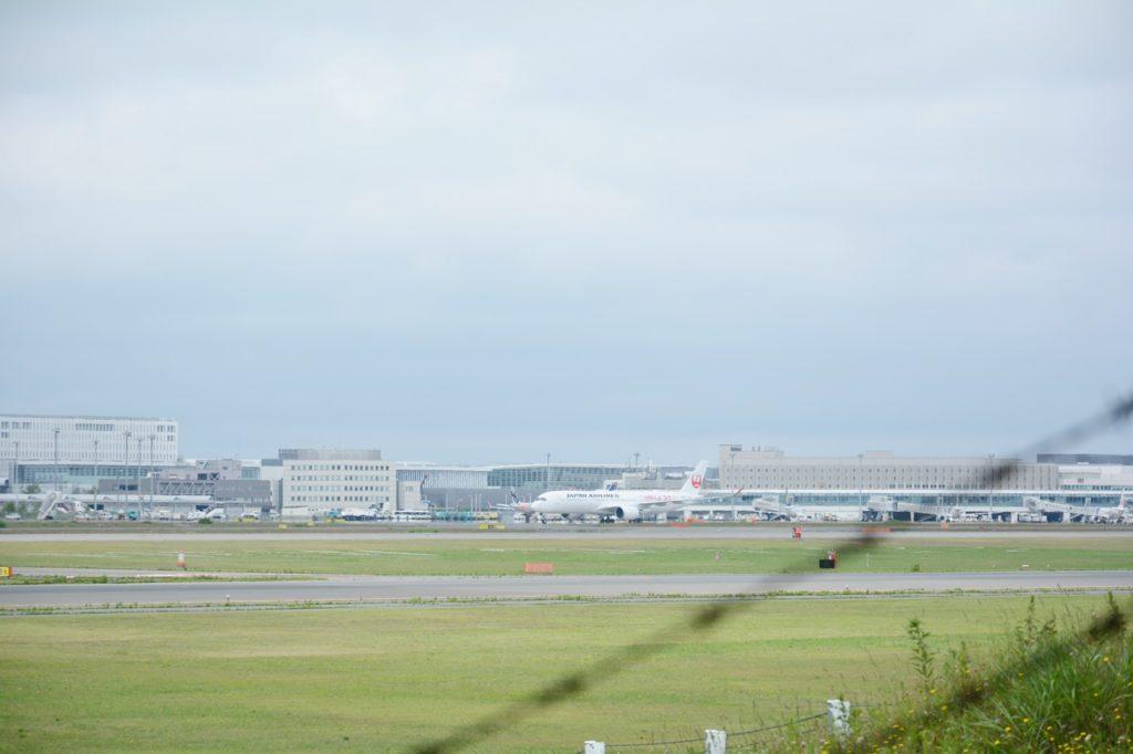 A350 飛行機